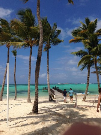 Barcelo Bavaro Beach - Adults Only : Praia