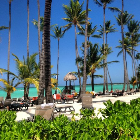 Barcelo Bavaro Beach - Adults Only: Praia hotel