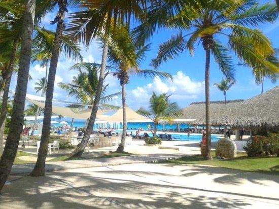 Viva Wyndham Dominicus Palace : vue piscine