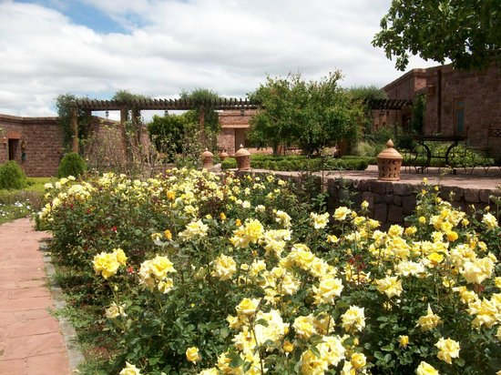 Kasbah Angour Atlas Mountains Hotel: Roses in April!
