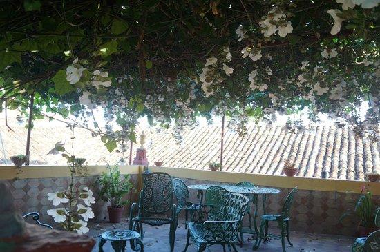 Hostal Amatista : roof garden