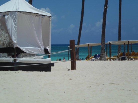 Ocean Blue & Sand: Strand