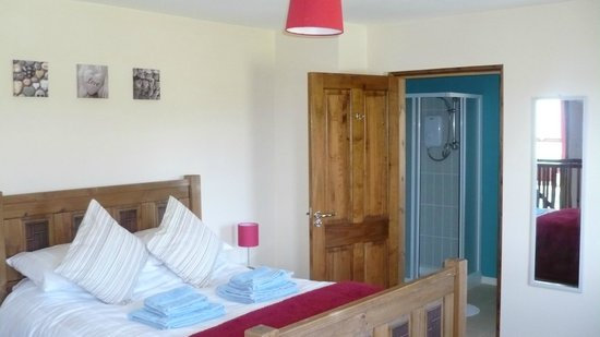 Maghernahar House B&B: Double room with en-suite / shower.