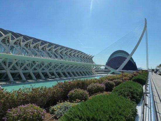 Ciudad de las Artes y las Ciencias: Vista dall'alto