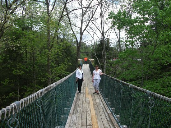 Foxfire Mountain Adventures : The Swinging Bridge