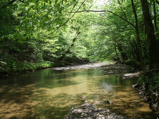 Foxfire Mountain Adventures: Along the River Trail
