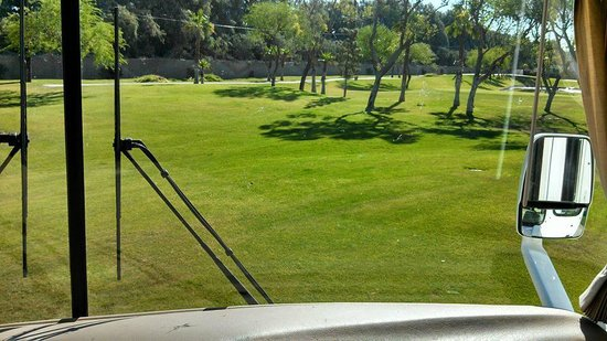 Emerald Desert RV Resort: View of park from inside our RV..