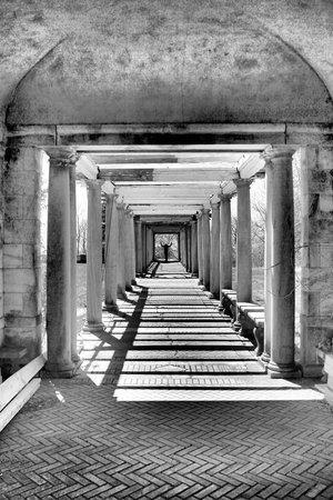 Swannanoa Palace : The garden