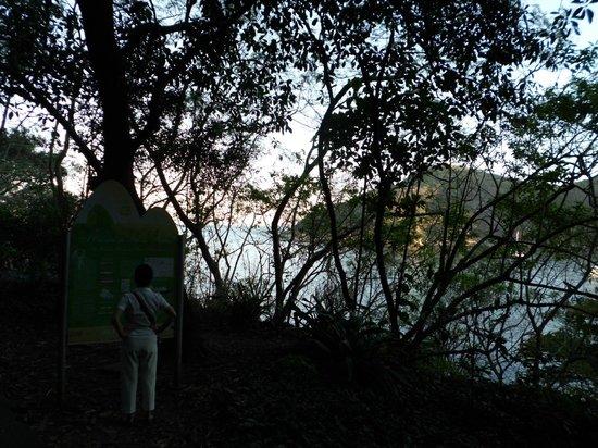 Claudio Coutinho Trail: Outra vista da Pista Claudio Coutinho.