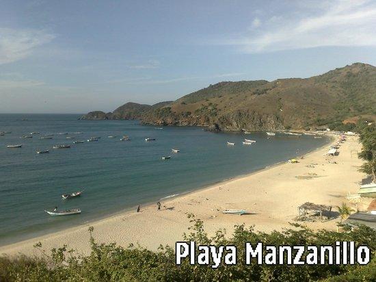 Playa Manzanillo : Playa soleada