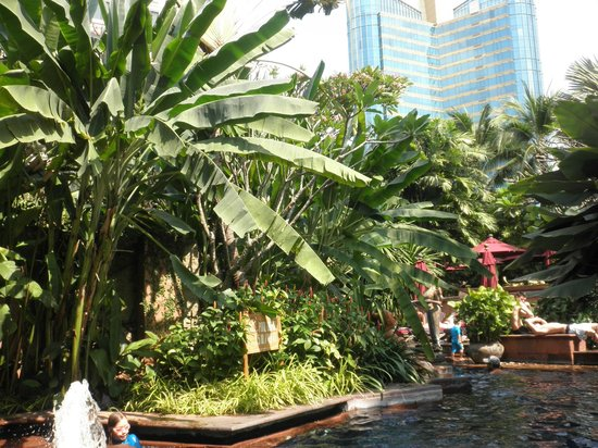 Sheraton Grande Sukhumvit, A Luxury Collection Hotel: プール・エリアは緑のオアシス