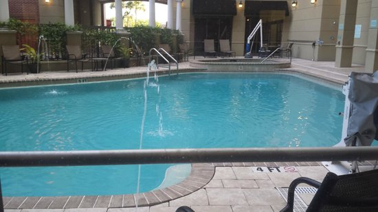 Hilton Garden Inn Jacksonville Downtown/Southbank: View from dining/lounge area