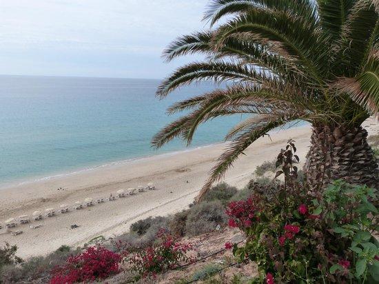 SBH Club Paraiso Playa: plage