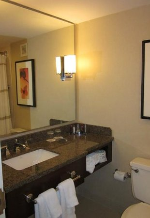Atlanta Marriott Century Center/Emory Area: Bathroom