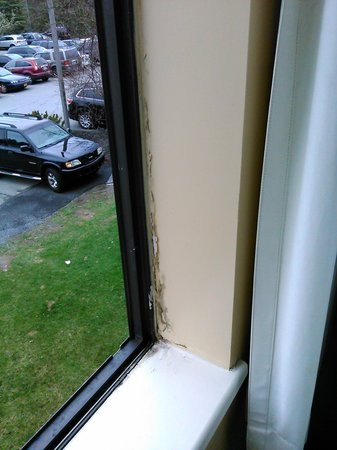 Chateau Resort & Conference Center: WIndow