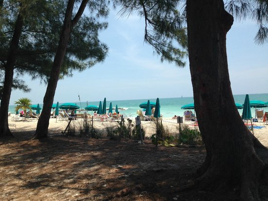 Fort Zachary Taylor Historic State Park: Praia