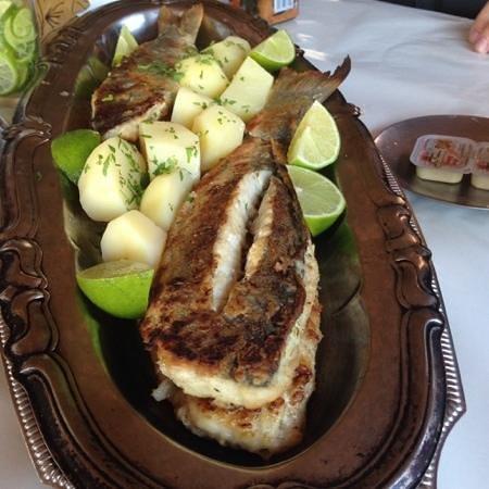 Joca Restaurante: delicious fresh
