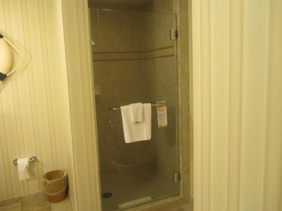 Disney's Paradise Pier Hotel : Shower in the half bath