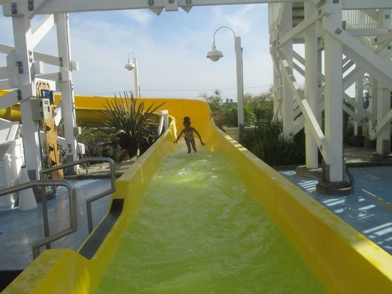 Disney's Paradise Pier Hotel : The slide at the pool