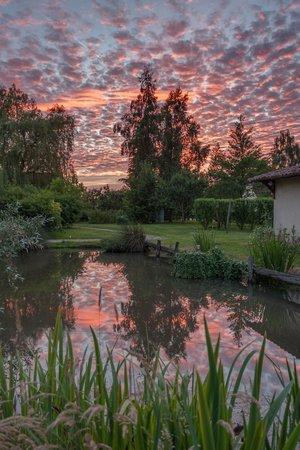 Chambres d'hotes en Bourgogne du DEVU : Vue du jardin