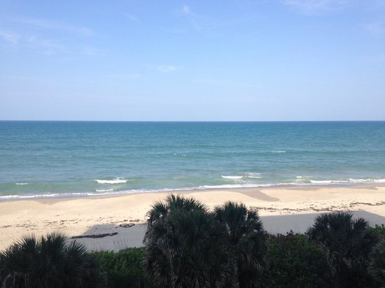 DoubleTree Suites by Hilton Melbourne Beach Oceanfront : Like a private beach!
