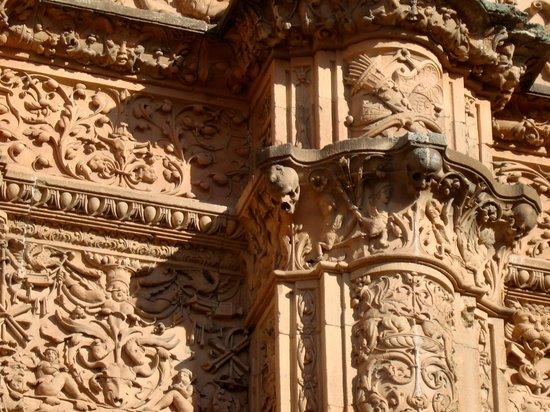 La Rana de Salamanca: busca la rana