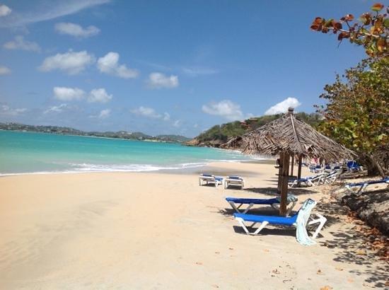 Coconut Beach Club Photo