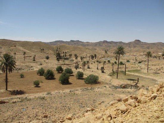 Club Med Djerba la Douce : excursion matmata
