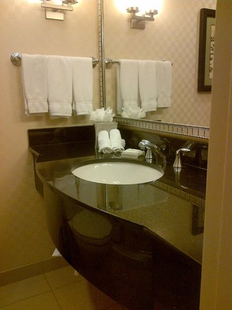Hilton Garden Inn Rockville - Gaithersburg: Bathroom