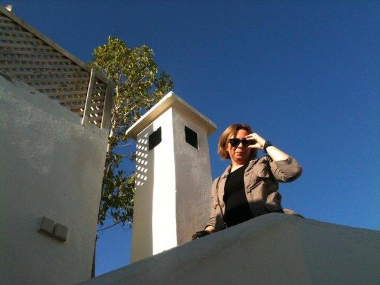 Riad le Coq Berbere: Dalla terrazza