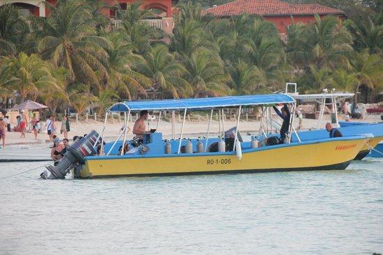 Bananarama Beach and Dive Resort: Dive boat
