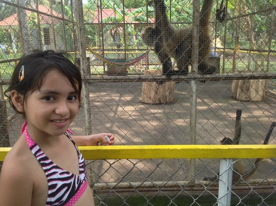 Pato Canales Hotel and Resort: nice little zoo here