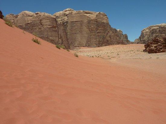 Bedouin Advisor Camp: red dunes