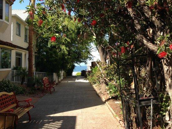 The Hotel California: Main courtyard walkway view to beach