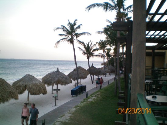 Tamarijn Aruba All Inclusive : Beach at Dawn