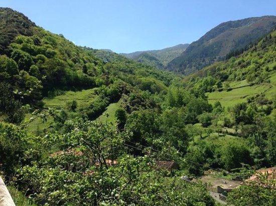 Centro Btt Valles del Oso: Vistas en la subida por la senda del oso (camino hacia el pantano)