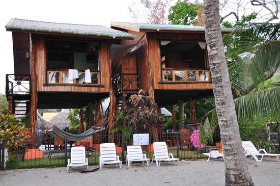 Samara Tree House Inn: View from the beach