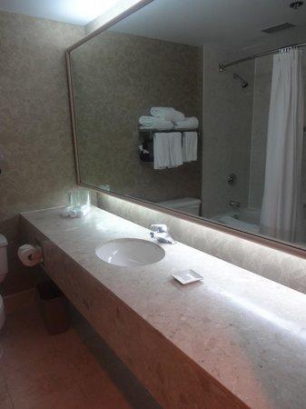 Delta by Marriott St. John's Conference Centre: unique bathroom mirror