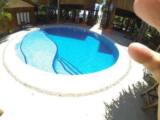Samara Tree House Inn : Pool