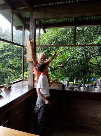 Rambala Jungle Lodge: discussing wildlife from main lodge