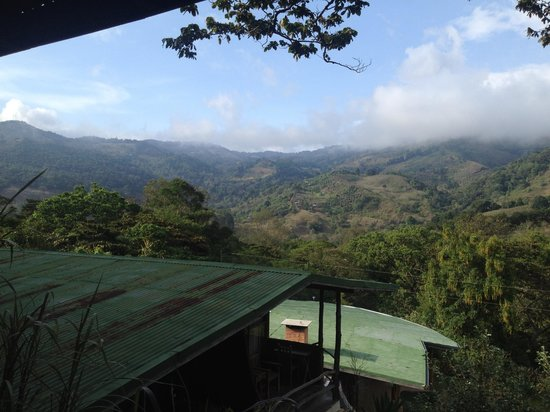 Toucanet Lodge: View from room