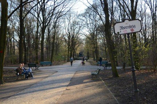 Tiergarten: Herlige gode stier med plads til gå og skating
