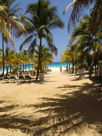 Hotel Riu Playacar: Paraíso IV