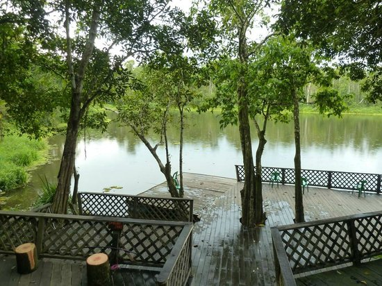 Tungog Rainforest Eco Camp : Lake view from dining area