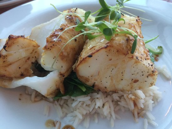 The Rooms Cafe: Atlantic Cod