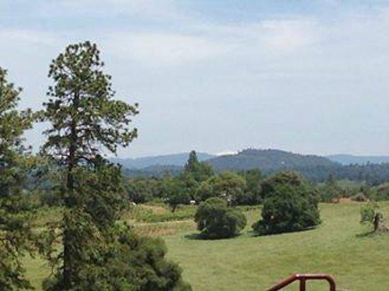 Helwig Vineyards & Winery : Helwig views