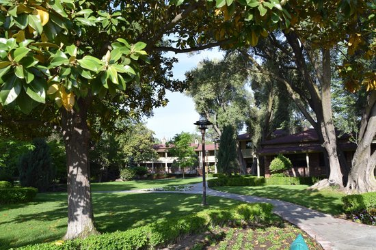 Paso Robles Inn: part of gardens
