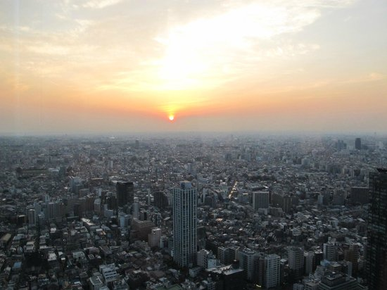 Tokyo Metropolitan Government Buildings: sunset view