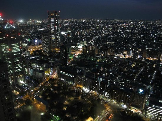 Tokyo Metropolitan Government Buildings: magnificent city lights