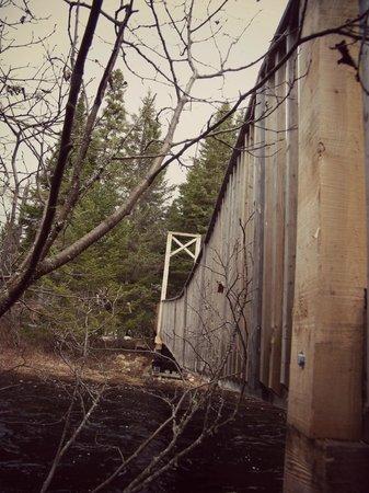 Kabania : Pont des sentiers